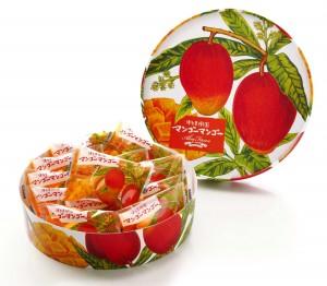 博多果樹園マンゴーマンゴーパッケージ